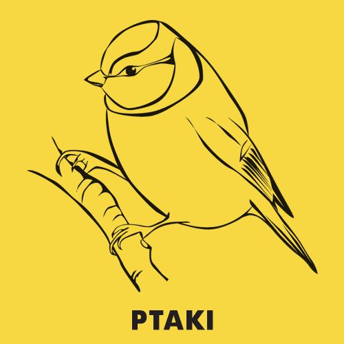 Kolorowanki dla dzieci zwierzęta / Ptaki