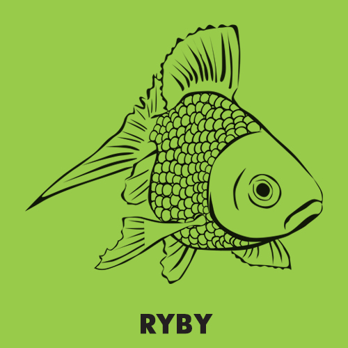 Kolorowanki dla dzieci zwierzęta / Ryby