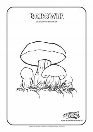 Kolorowanki dla dzieci - Rośliny / Borowiki. Kolorowanka z borowikami