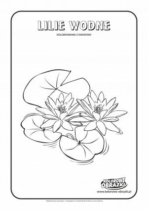 Kolorowanki dla dzieci - Rośliny / Lilie wodne. Kolorowanka z liliami wodnymi