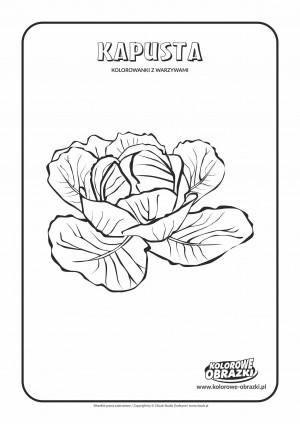 Kolorowanki dla dzieci - Rośliny / Kapusta. Kolorowanka z kapustą