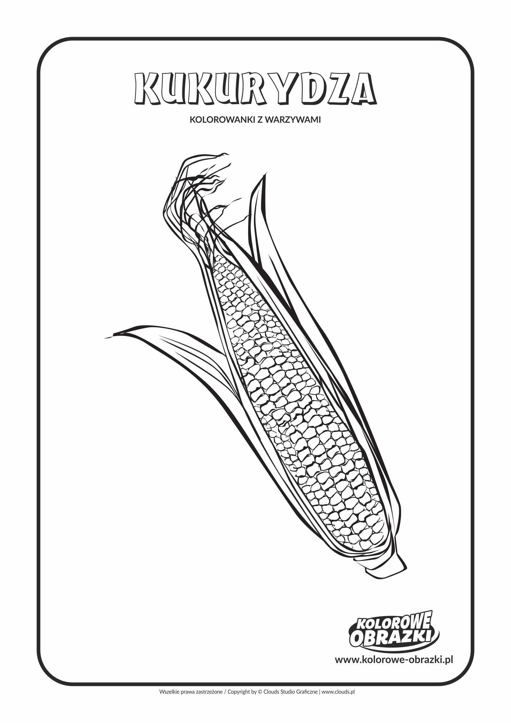 Kolorowanki dla dzieci - Rośliny / Kukurydza. Kolorowanka z kukurydzą