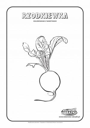 Kolorowanki dla dzieci - Rośliny / Rzodkiewka. Kolorowanka z rzodkiewką