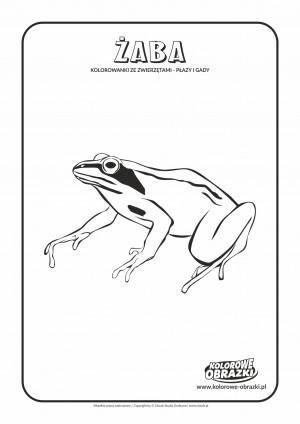 Kolorowanki dla dzieci - Zwierzęta / Żaba. Kolorowanka z żabą