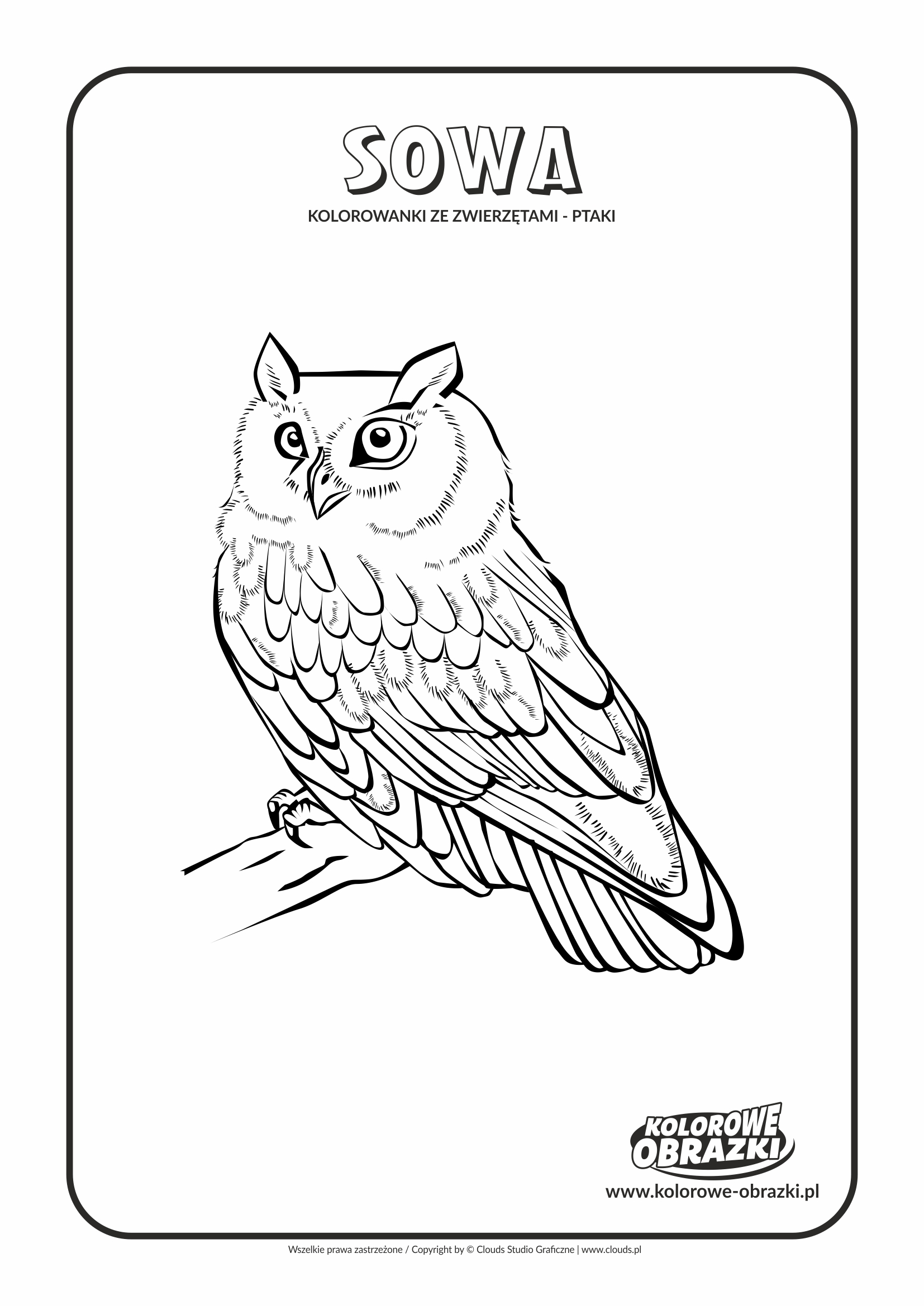 Kolorowanki dla dzieci - Zwierzęta / Sowa. Kolorowanka z sową