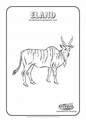 Kolorowanki dla dzieci - Zwierzęta / Antylopa Eland, Kolorowanka z antylopą eland