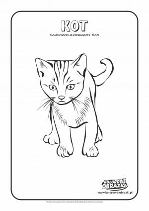 Kolorowanki dla dzieci - Zwierzęta / Kot, Kolorowanka z kotem