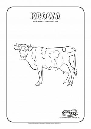 Kolorowanki dla dzieci - Zwierzęta / Krowa, Kolorowanka z krową