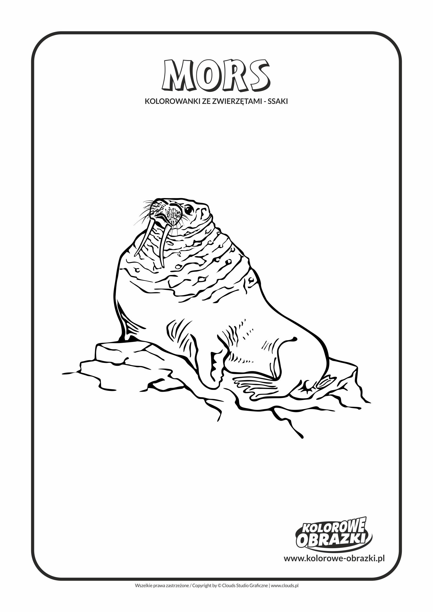 Kolorowanki dla dzieci - Zwierzęta / Mors
