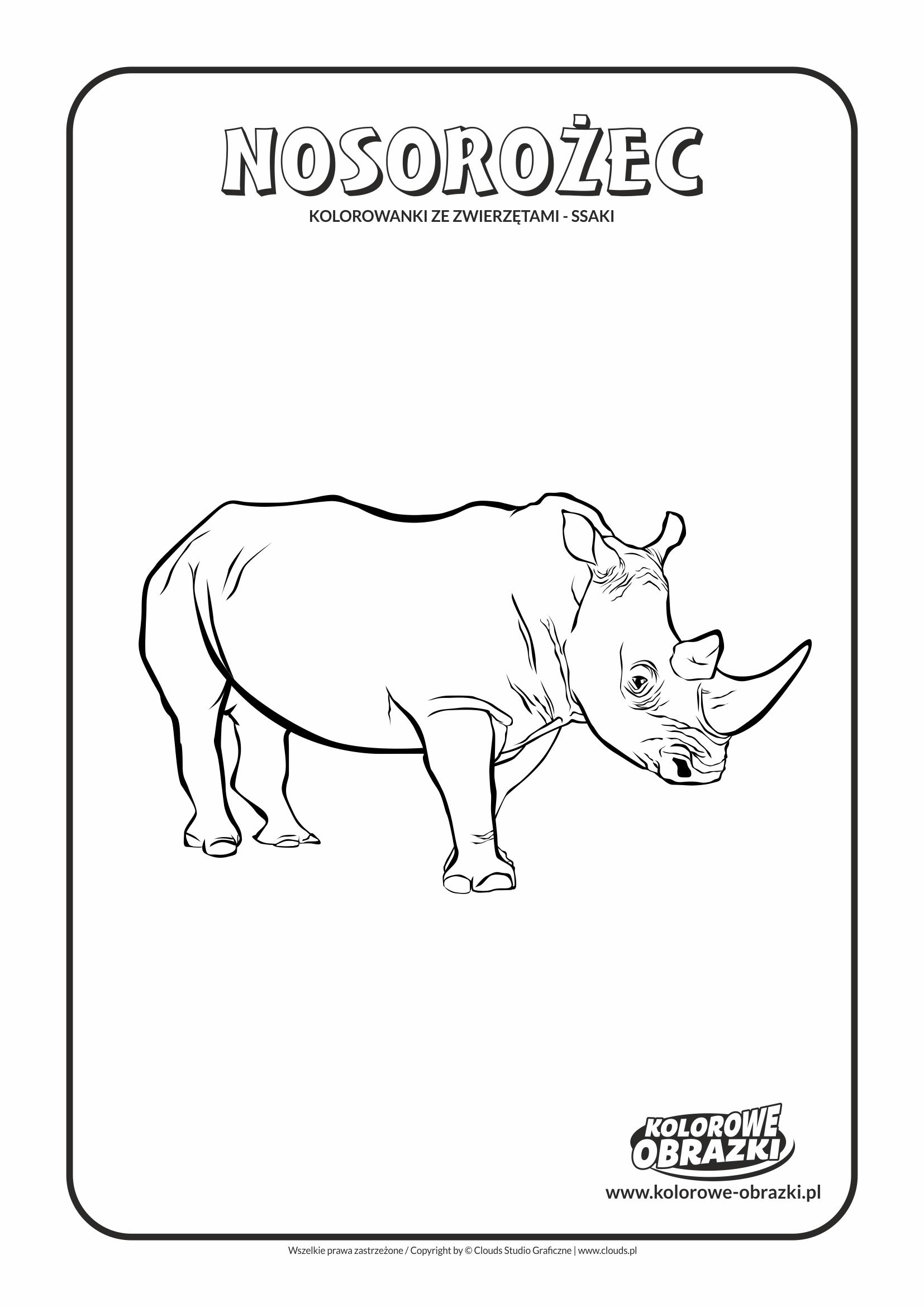 Kolorowanki dla dzieci - Zwierzęta / Nosorożec, Kolorowanka z nosorożcem