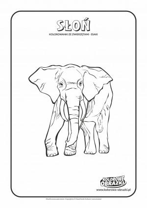 Kolorowanki dla dzieci - Zwierzęta / Słoń, Kolorowanka ze słoniem