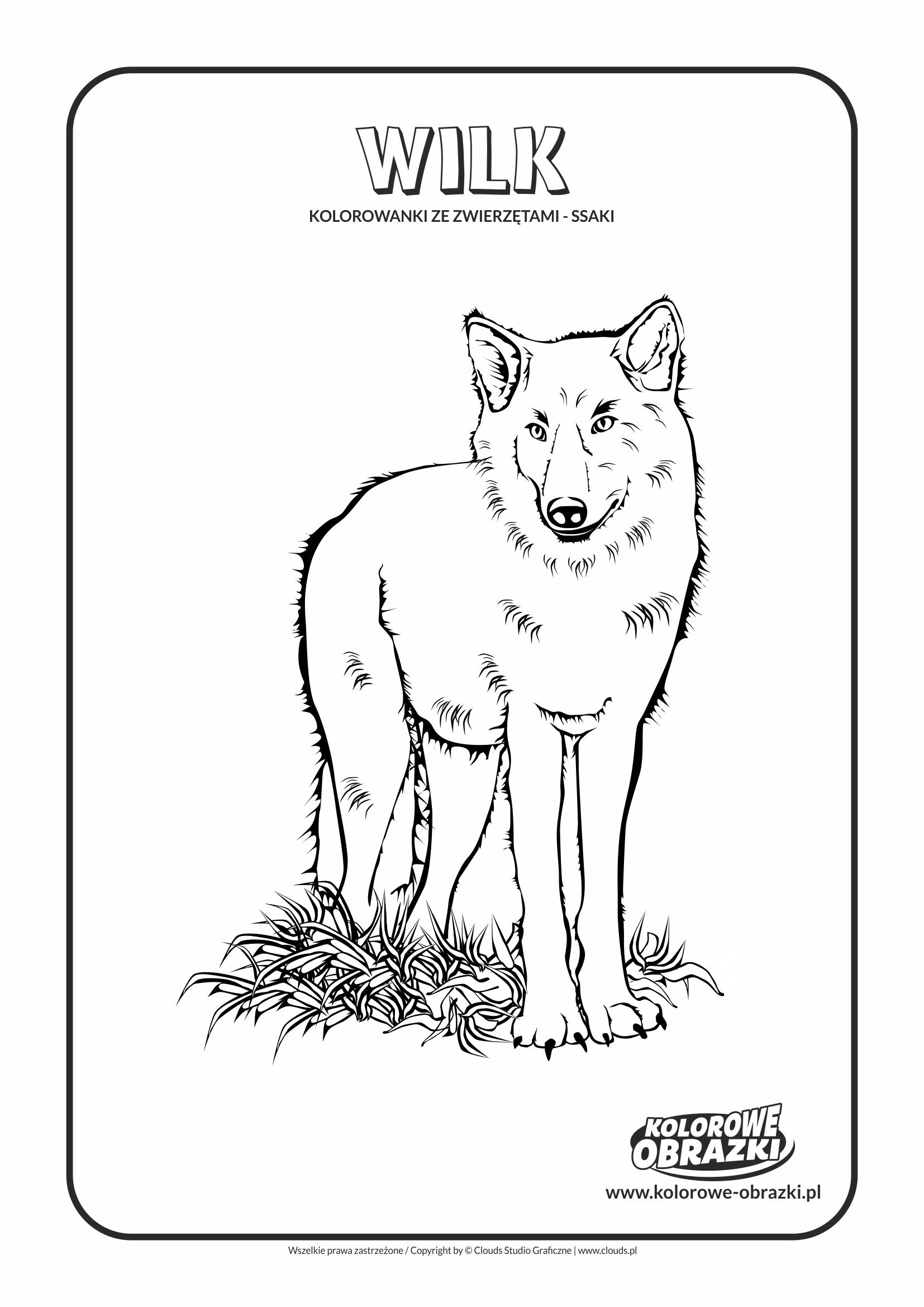 Kolorowanki dla dzieci - Zwierzęta / Wilk