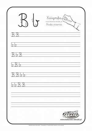 Kaligrafia dla dzieci - Ćwiczenia kaligraficzne / Litera B. Nauka pisania litery B