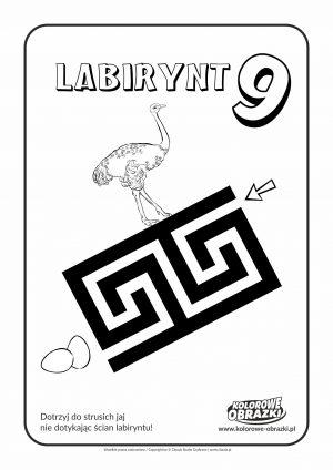 Kolorowanki dla dzieci - Labirynty / Labirynt nr 9
