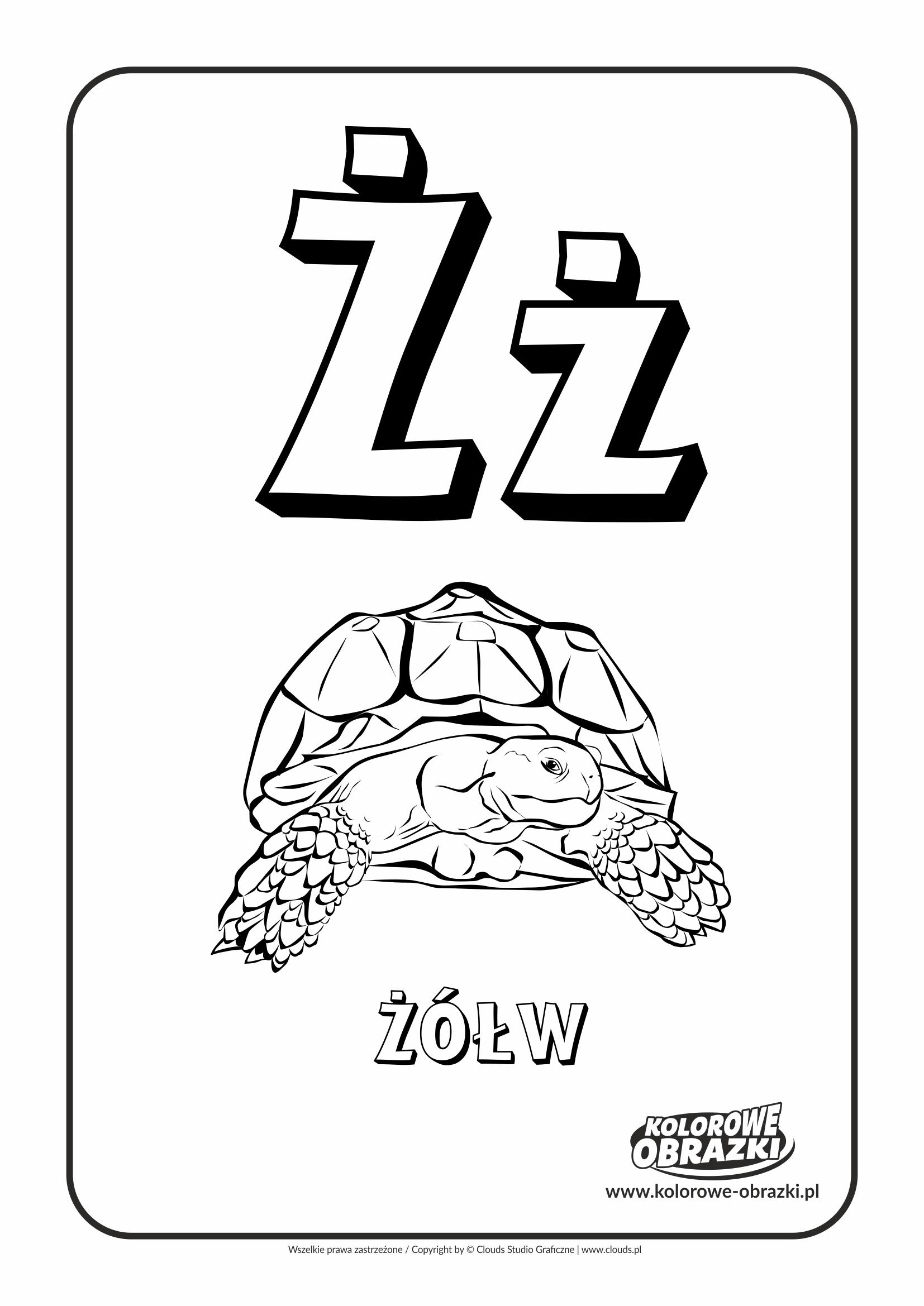 Kolorowanki dla dzieci - Litery / Litera Ż. Kolorowanka z literą Ż
