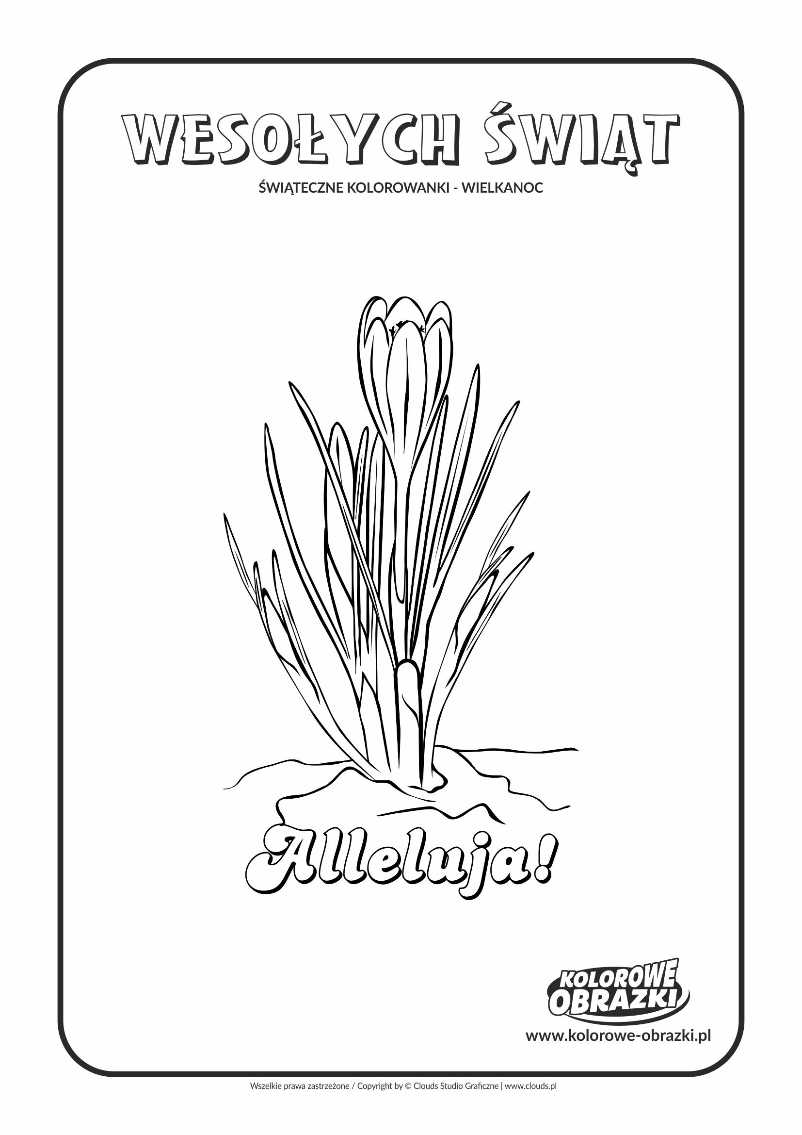 Kolorowanki dla dzieci - Wielkanoc / Wielkanocne kwiatki 2. Kolorowanka z wielkanocnymi kwiatkami 2