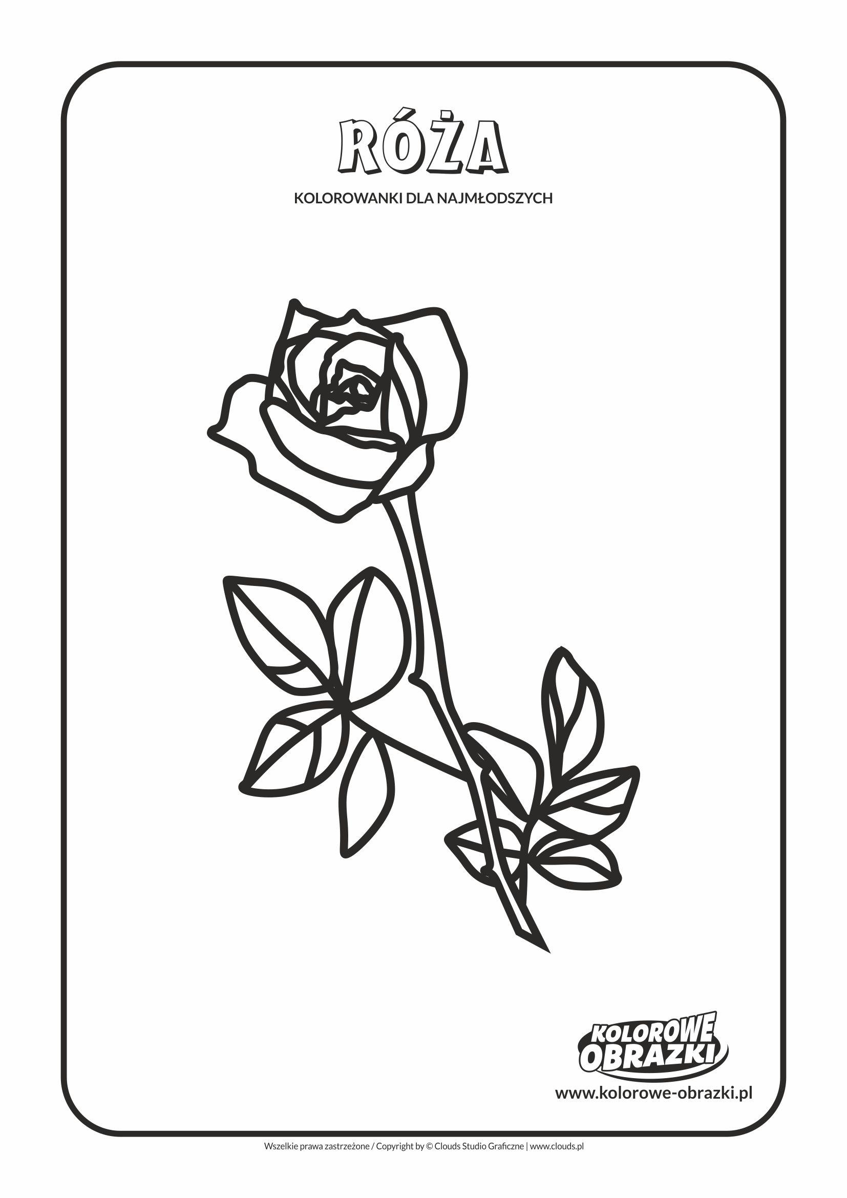 Proste kolorowanki dla najmłodszych - Kwiaty / Róża. Kolorowanka z różą