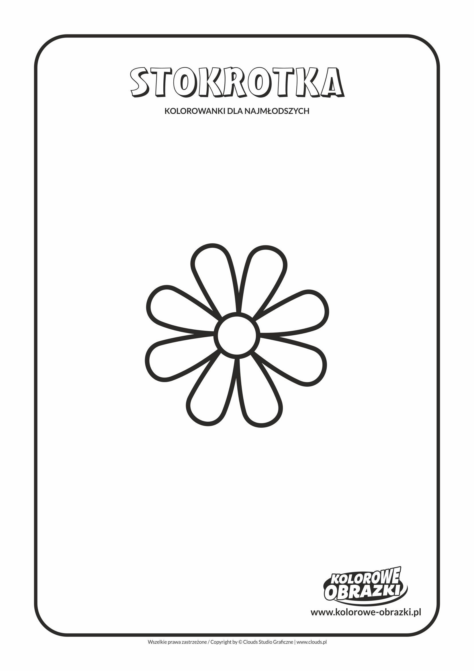 Proste kolorowanki dla najmłodszych - Kwiaty / Stokrotka. Kolorowanka ze stokrotką