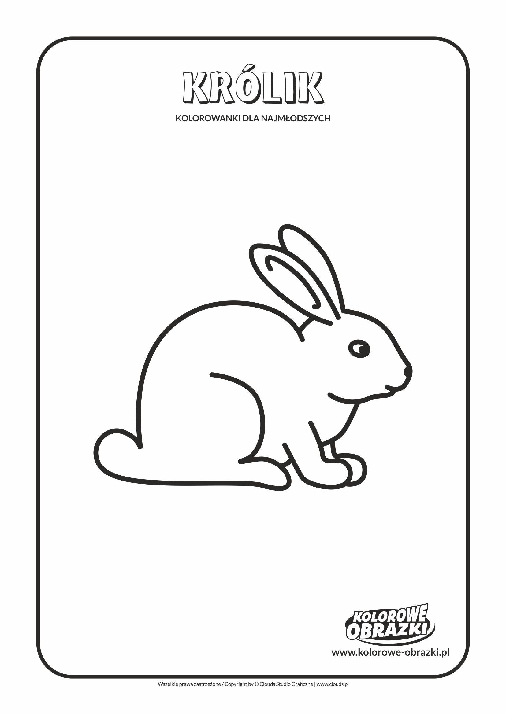 Proste kolorowanki dla najmłodszych - Zwierzęta / Królik. Kolorowanka z królikiem