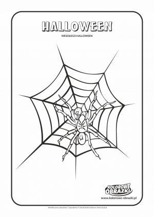 Kolorowanka pająk Halloween - Kolorowanki Halloween