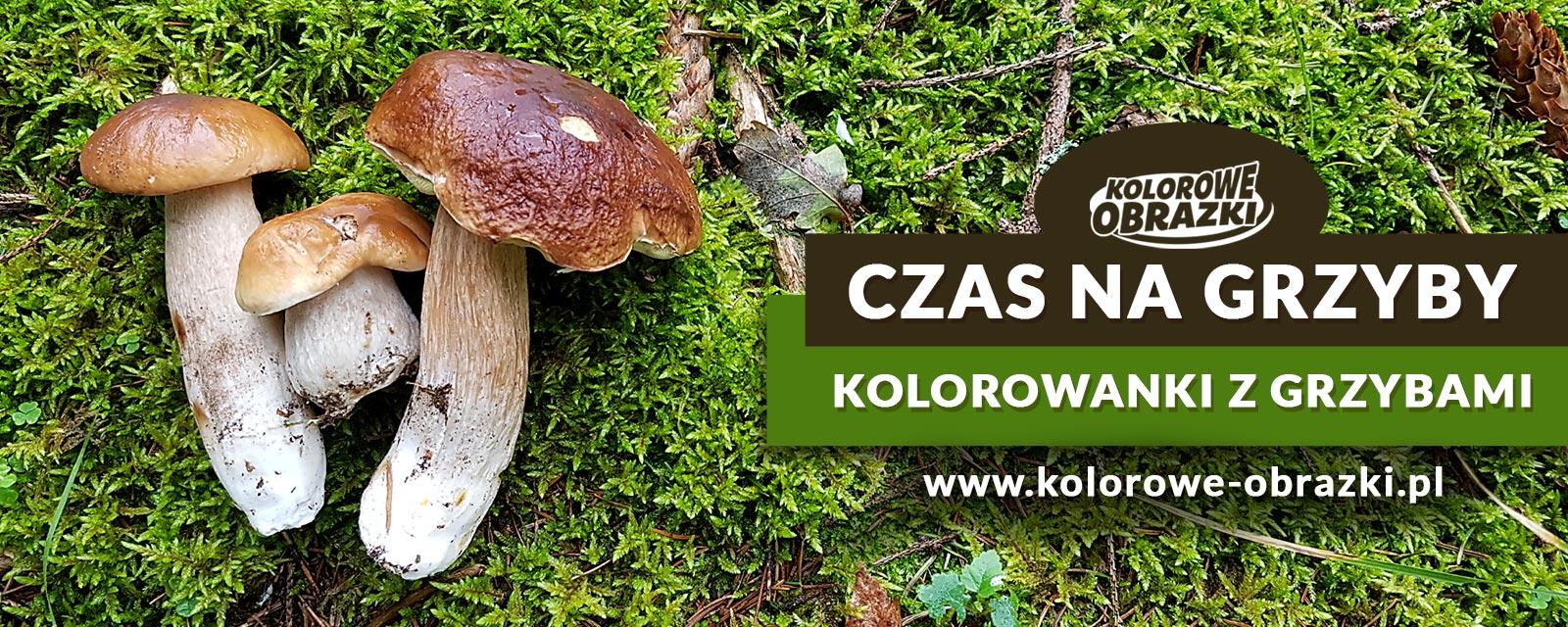 Kolorowanki grzyby - Kolorowanki z grzybami dla dzieci