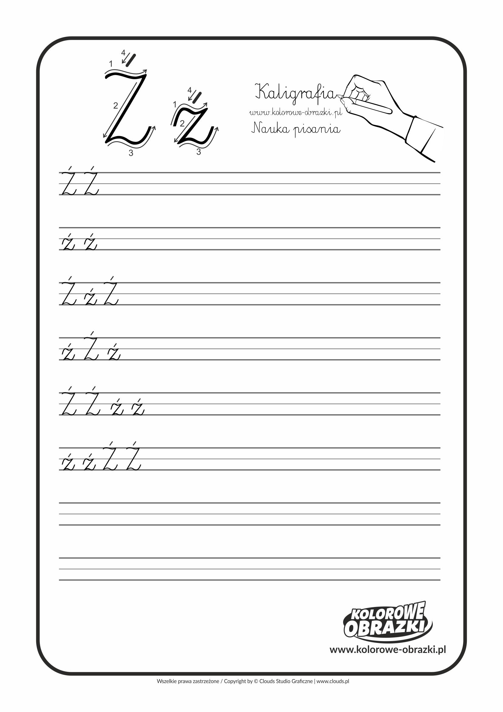 Kaligrafia dla dzieci - Ćwiczenia kaligraficzne / Litera Ź. Nauka pisania litery Ź